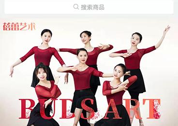 龙岩蓓蕾文化发展有限公司